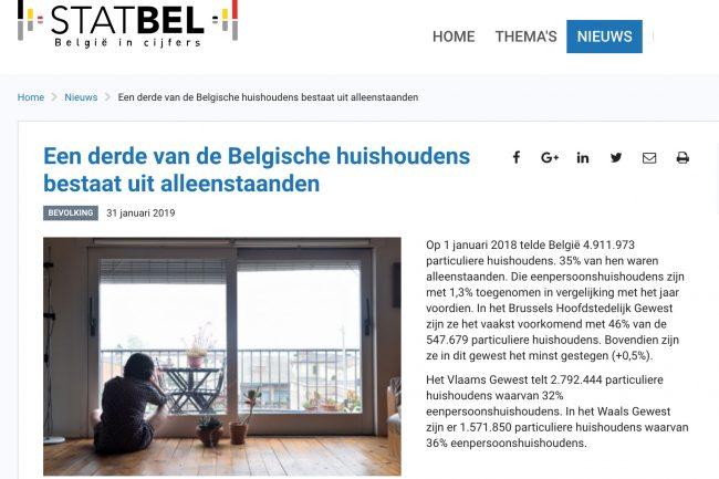Vlaamse huishoudens